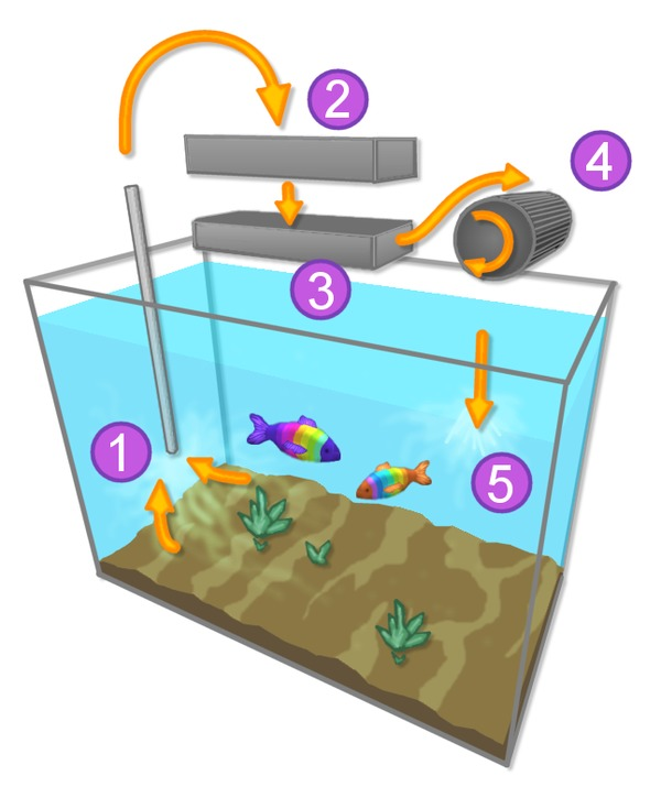 Aquarium-filtration