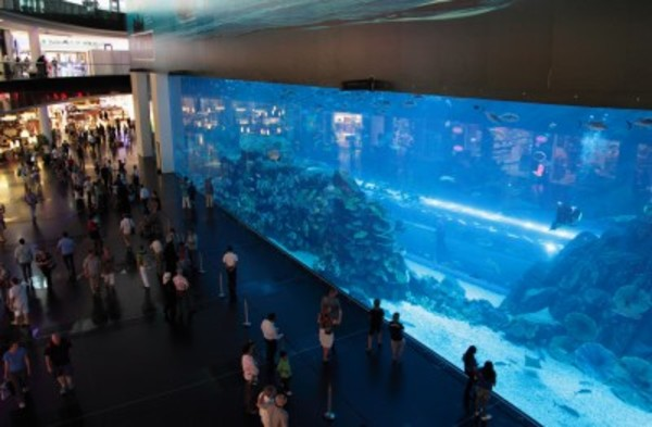 Worlds-Largest-Custom-Fish-Aquarium