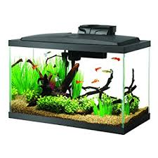 Aqueon Aquarium Kit