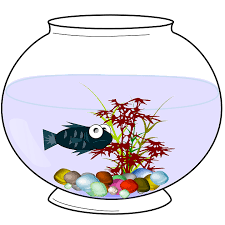 Round Fish Tanks