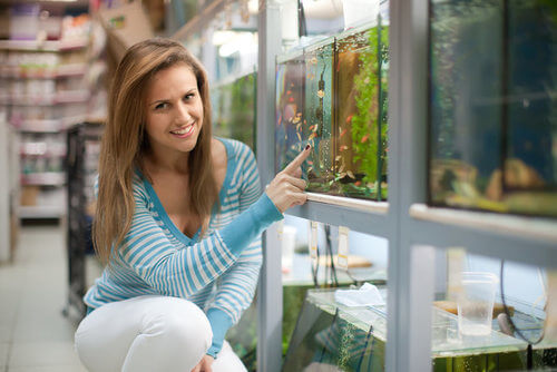 Lady-choosing-fish-tank