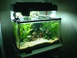Tropical-Fish-Tanks